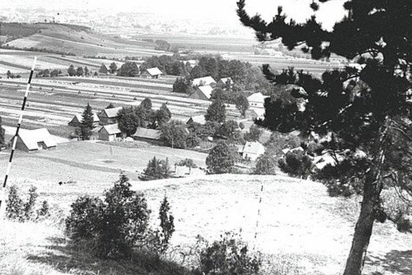 Pohľad zo začiatku 50-tych rokov zachytáva plochu 1. predhradia hradiska na Hrádku.