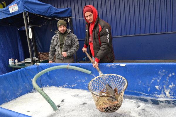 Pri obchodnom dome Tesco pri Železničnej stanici ponúkajú aj zabitie ryby.