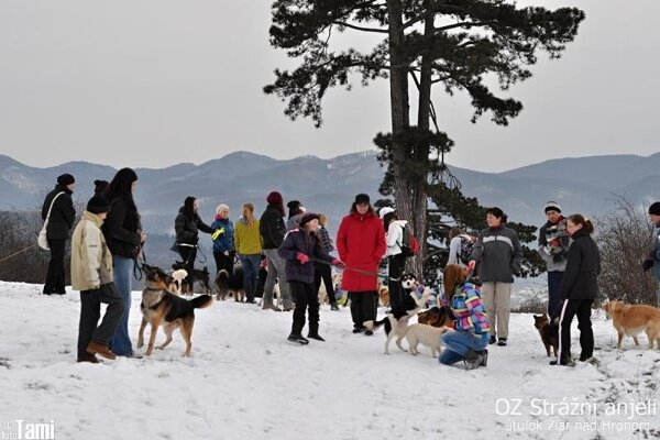 Čo takto zimná prechádzka na Šibák?