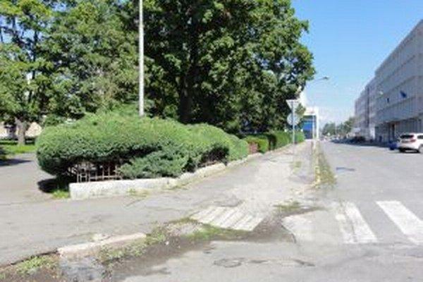 Mesto chce zrevitalizovať Štúrov park aj priľahlé ulice.