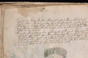 Priblížená ukážka textu vo Voynichovom rukopise na strane 31.
