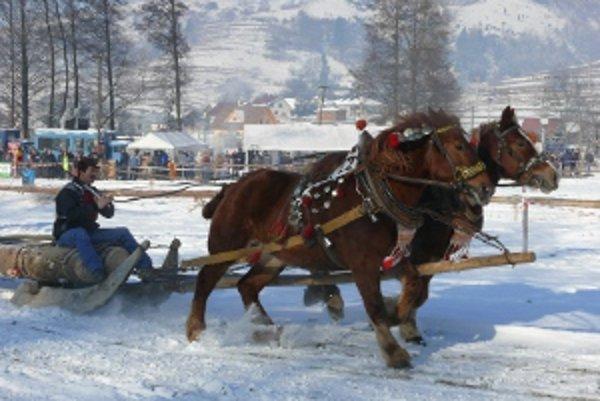 V Hriňovej súťažilo sedemnásť furmanov.