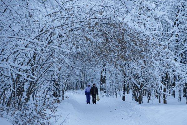 Snehová kalamita v Moskve.