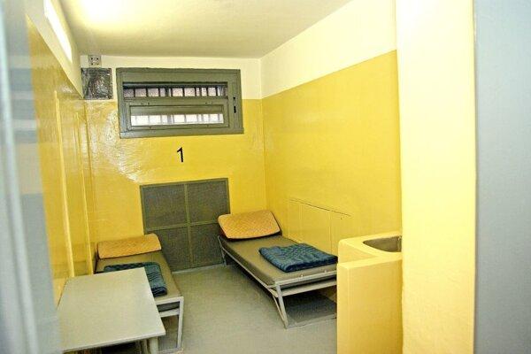 Prešovčan ničil zariadenie policajnej cely.