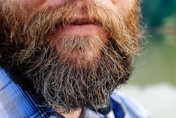 Baktérie v brade zrejme nie sú až také nebezpečné, ako si mnohí mysleli.