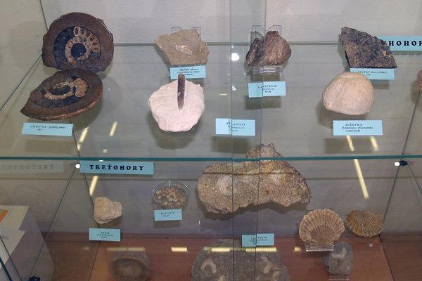 Vystavené exponáty v múzeu.