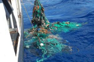 Účastníci prieskumnej expedície vyťahujú z vody sieť.
