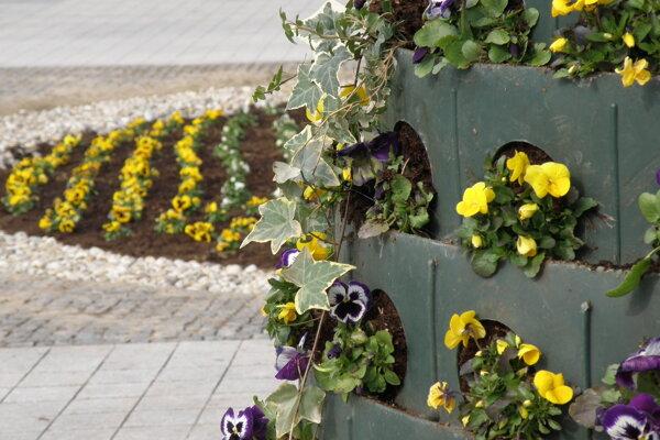 Aj kvety skrášľujú prievidzské námestie.