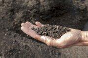 Kompost zbiologického odpadu. Nádoby naň bude obec zrejme nútená kúpiť za vlastné.