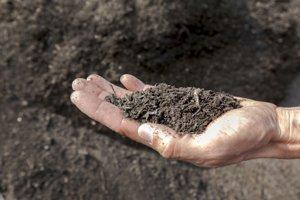 Kompost zbiologického odpadu dokáže dodať pôde dôležité živiny.