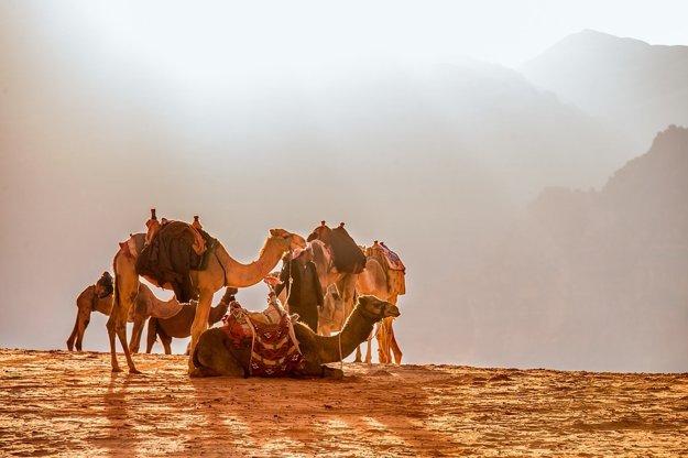 Jordánsko: Kráľovstvo v púšti