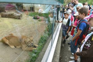 Zoo pozýva na Deň zeme.