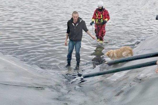 Záchrana zvierat zo zásobníka na vodu.