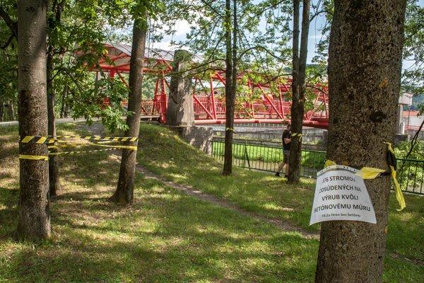 Iniciatíva Za Hron bez betónu minulý týždeň opáskovala pri rieke stromy.