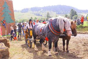 Čo by to bolo za farmársku akciu bez koní. A deťom sa ťažné krásavce veru páčili.