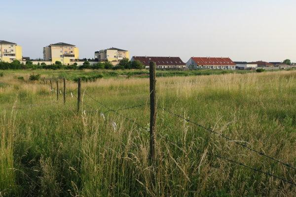 Približne v týchto miestach by mal nový termálny park stáť.