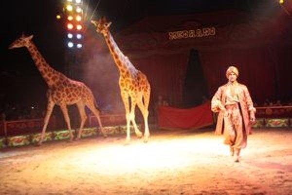 Najväčšia pohyblivá ZOO na svete. Aj to je cirkus Medrano.