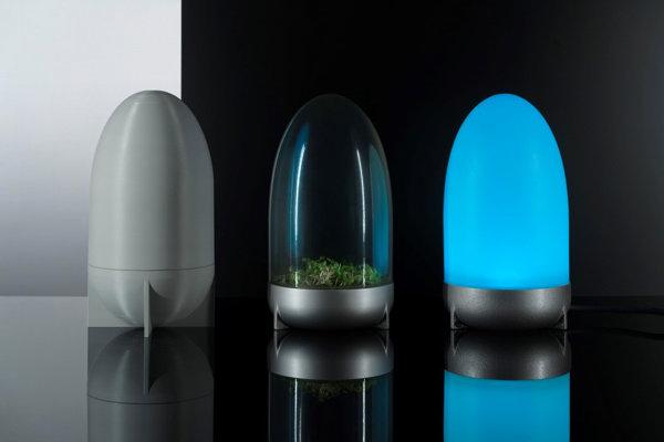 Čistič vzduchu, malé terárium a lampa.