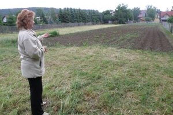Darina Chudá na poli, kde šarapatia diviaky.