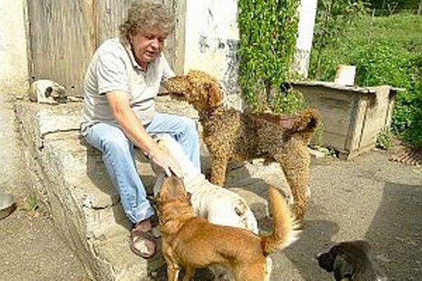 Riaditeľ tvrdí, že o zvieratá bude postarané.