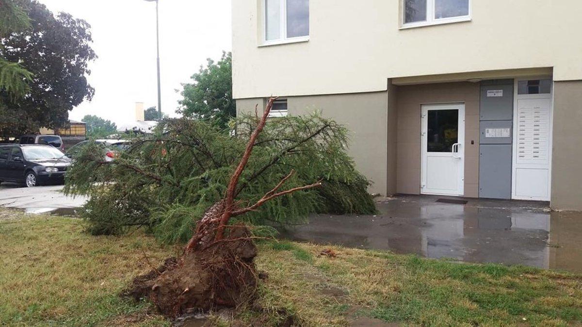 bdc13b6fe VIDEO: Silná búrka pri Prievidzi vyvracala stromy a poškodila ...
