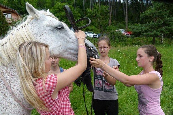 Koníky zaujali deti asi najviac.