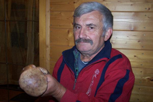 Františkovi Ďurišovi sa ani nesnívalo, že by v decembri mohol priniesť z hory štyri kilogramy výbornej pôvabnice fialovej.
