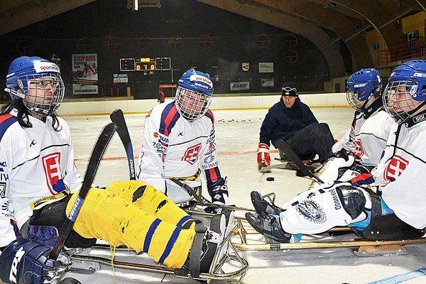 Slovenskí sledge hokejisti sa zúčastnili druhých MS.