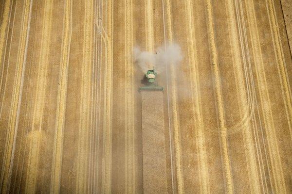 Vďaka poľnohospodárstvu sa ľudia usadili a mohli sa začať špecializovať.