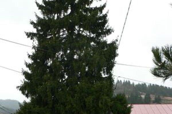 Vianočný strom v Mokradi.