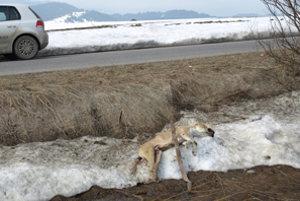 Pohľad na zem po zime je niekedy šokujúci.