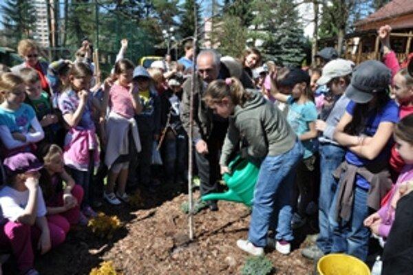 Deti pomáhajú primátorovi Romanovi Matejovovi pri sadení čerešne.