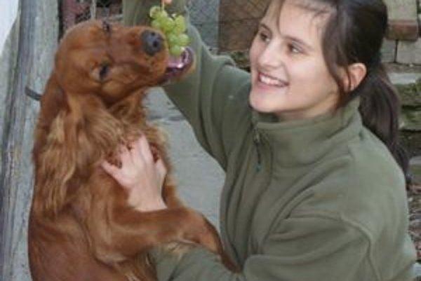 Ústianske hrozno chutí aj psovi Tobymu. Ten si rád pochutí aj na jablkách.