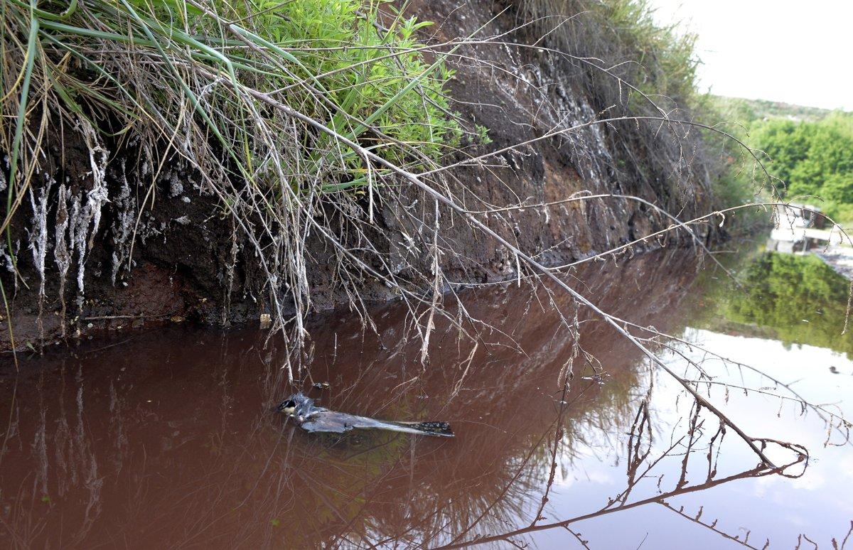 Na skládke odpadu Vlčie hory pri Hlohovci polícia zistila ukladanie bežného  i nebezpečného odpadu napriek tomu 8011300679c