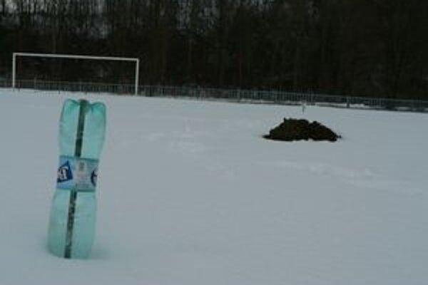 Ani záhradkársky fígeľ na neželaných návštevníkov futbalového ihriska v Bzinách nezabral. Krtkovia sa tam rozmáhajú vždy na jar a v jeseni.