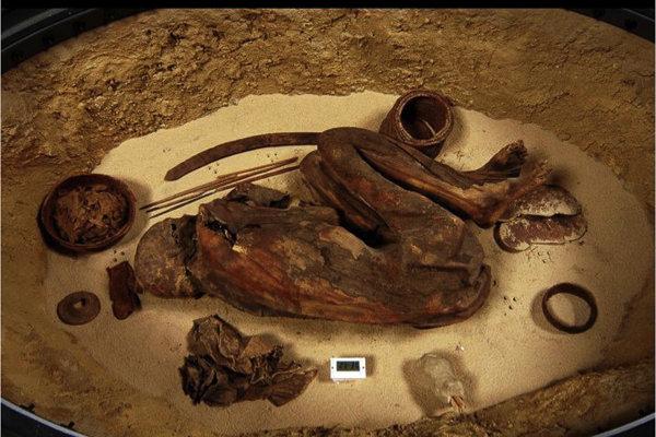 Múmia z Egyptského múzea v Turíne, vďaka ktorej sa podarilo odhaliť zloženie najstaršieho známeho balzamovacieho oleja.