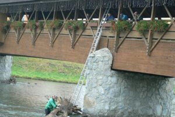Pracovníci Povodia Váhu sa pri vyťahovaní stromu z Oravy na breh potrápili.