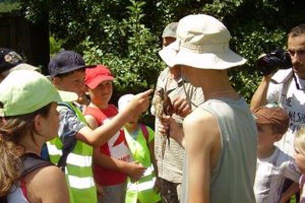 Pre deti v prímestských táboroch je vždy pripravený pestrý program.
