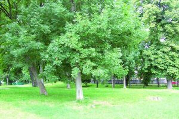 Mesto chce obnoviť aj park.