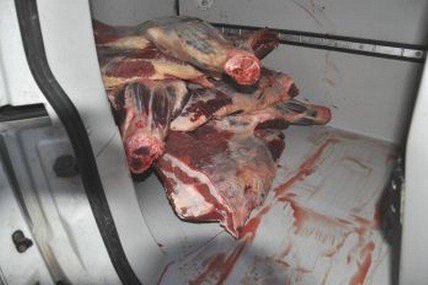 Obchodníci často mäso prevážajú aj takto nechutne na podlahe auta.
