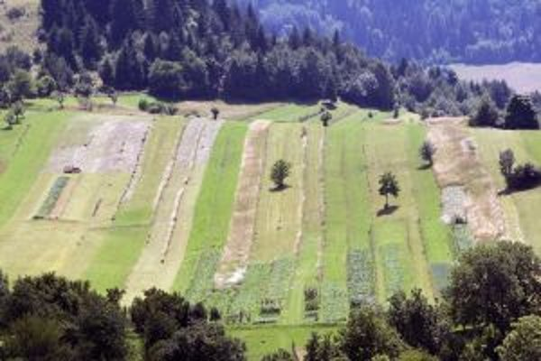 Komasácie pomôžu pri sceľovaní pozemkov.
