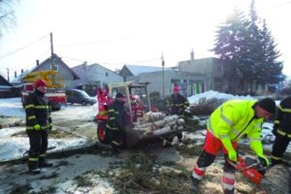 S výrubom stromov pomáhali i hasiči.