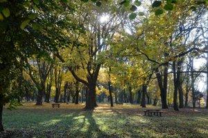 Lučenecký park