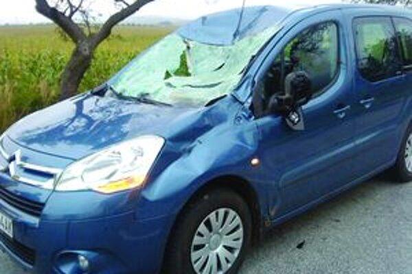 Zrážka s jeleňom zmenila auto na nepoznanie.