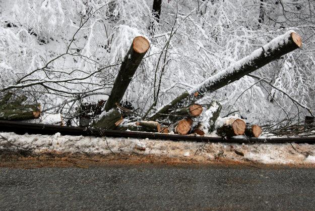 Horský priechod Kremnické Bane. Pod váhou snehu padali stromy.
