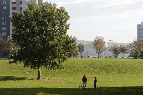 Budúce miesto, kde má vzniknúť park Pod záhradami.