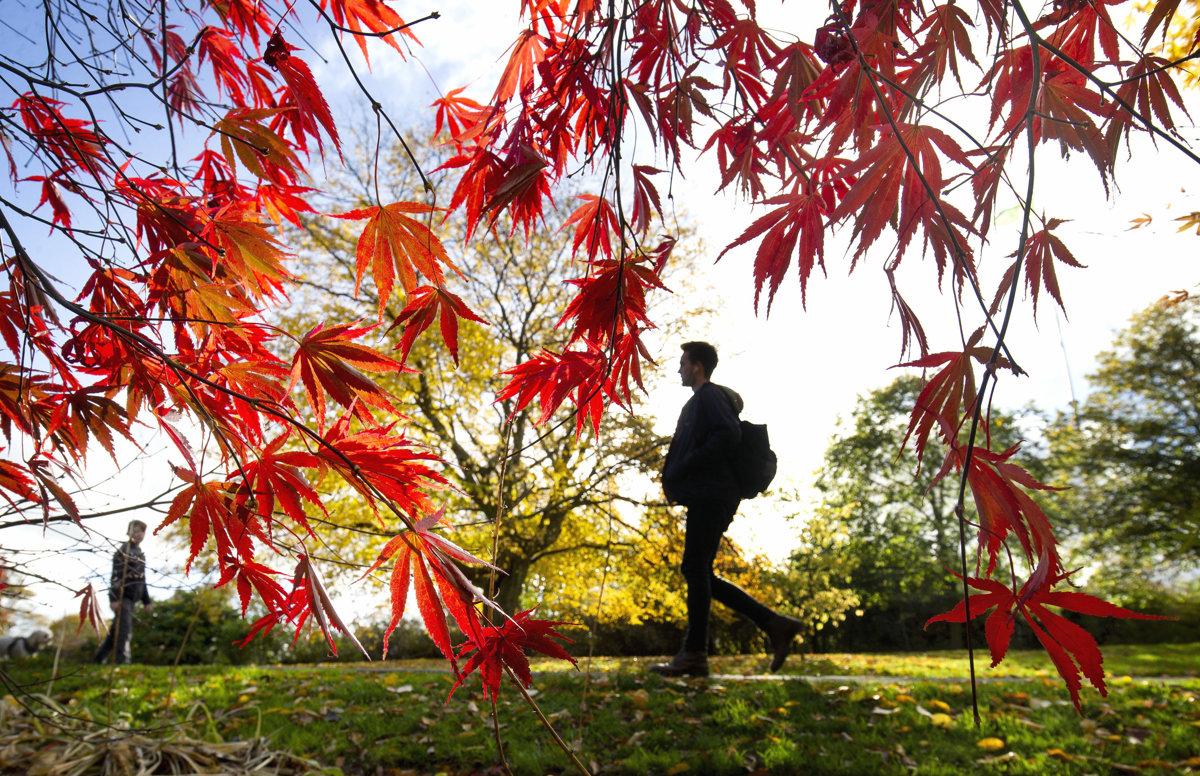 Príjemnú slnečenú jeseň už cez víkend vystrieda chladné aj daždivé počasie. fd8397d6b59