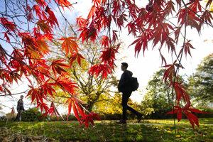 Jeseň hýri farbami.