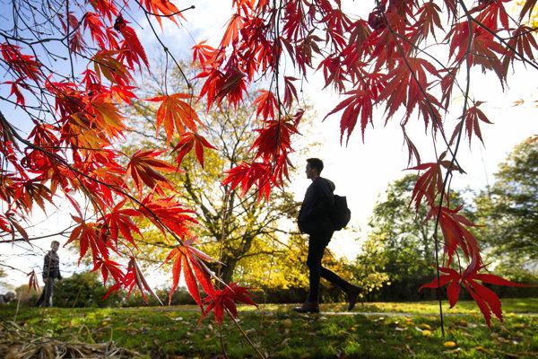Príjemnú slnečenú jeseň už cez víkend vystrieda chladné aj daždivé počasie.