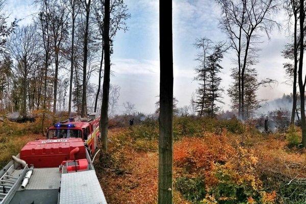 Požiar lesa pri Košiciach